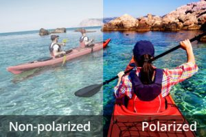 Polarizes Lenses